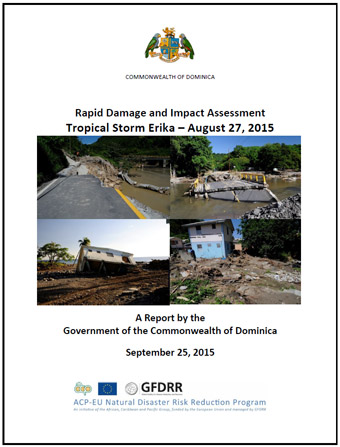 Rapid-Damage-and-Needs-Assessment-Final-Report